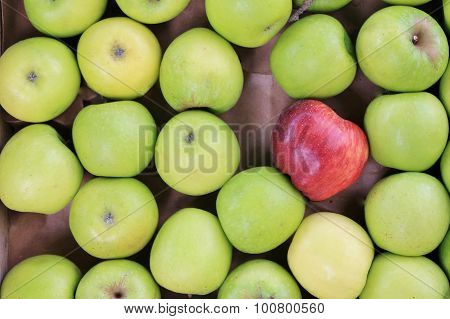 case of apples at market