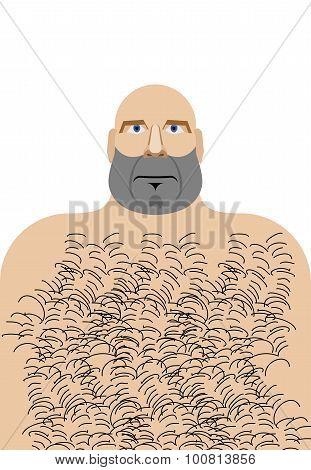 Man With Bald Head. Hillbilly With Hairy Chest. Vector Illustration Of Funny Man