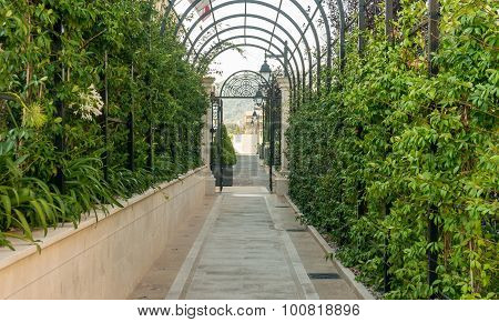 green arcs made of tropical plants above pedestrian pathway