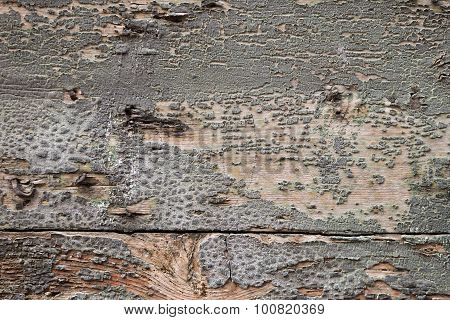 Wood texture background, bad condition