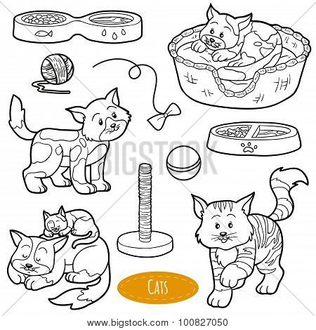 Colorless Set Of Cute Domestic Animals And Objects, Vector Family Cats And Objects