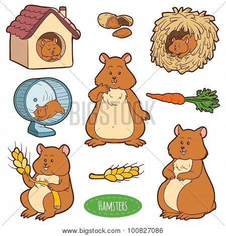 Colorful Set Of Cute Domestic Animals And Objects, Vector Stickers With Family Of Hamsters And Objec