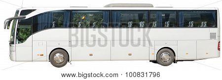 Bus on white