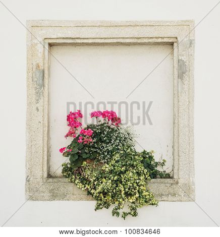 Stones Walled Window With Potted Flowers