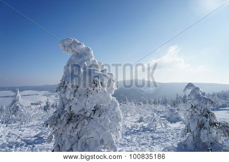 Winter wonderland in the Ore Mountains
