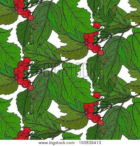 Seamless Vector Pattern With Hand Drawn Guelder Rose Branches