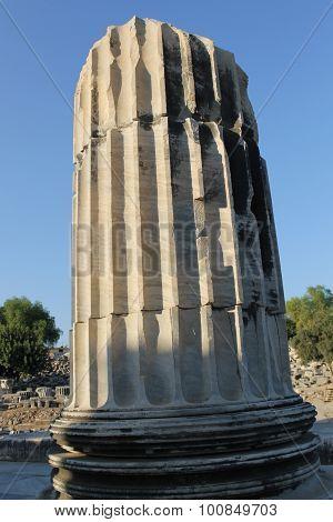 Ruins Temple of Apollo Didim