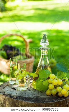 Grape brandy in glasses