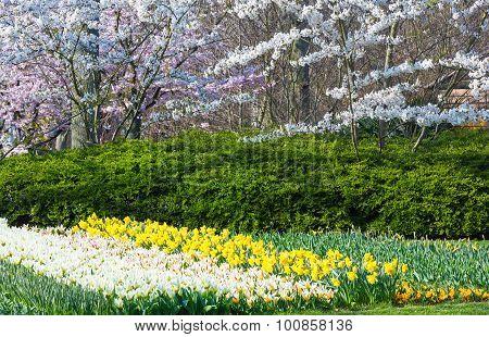 Spring Park.