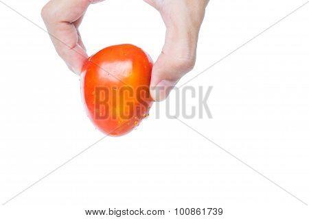 Hand holding fresh mini plum tomato