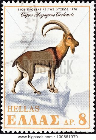 GREECE - CIRCA 1970: A stamp printed in Greece shows Cretan Wild Goat (Capra aegagrus cretensis)