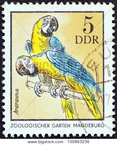 GERMAN DEMOCRATIC REPUBLIC - CIRCA 1975: A stamp printed in Germany shows Blue and Yellow Macaws