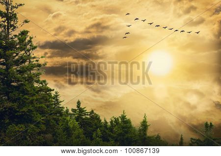 Background Cloudy Sky