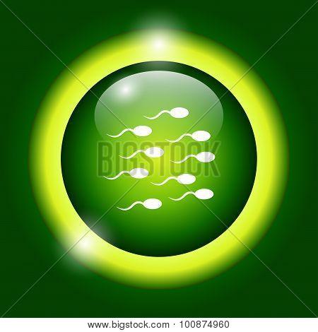 Sperm Icon
