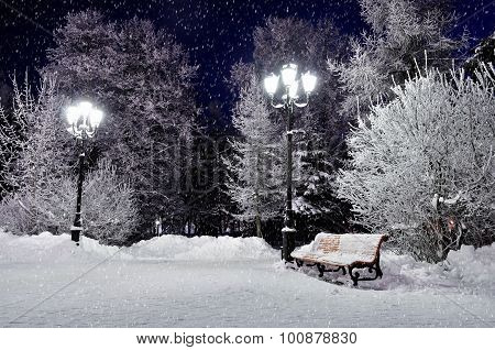 The Winter Evening