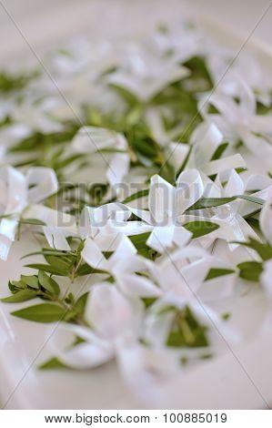 Wedding myrtle