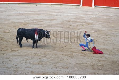 Spanish Torero Prepares To Attack The Bull