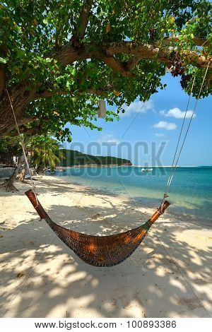 Hammock And Tree On A Beach