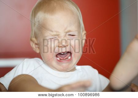 Small, Crying And Raging Toddler Having A Temper Tantrum