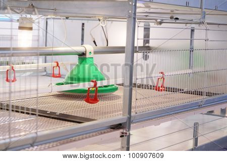 the equipment at the poultry farm