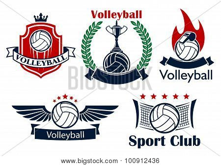 Volleyball game sporting heraldic emblems