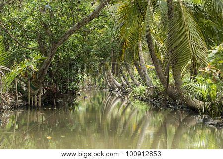 Asia Thailand Samut Songkhram Tha Kha Landscape