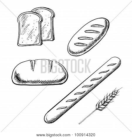 Toasts, long loaves, baguette and wheat ear