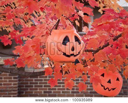 pair of jack-o-lanterns baskets in autumn tree