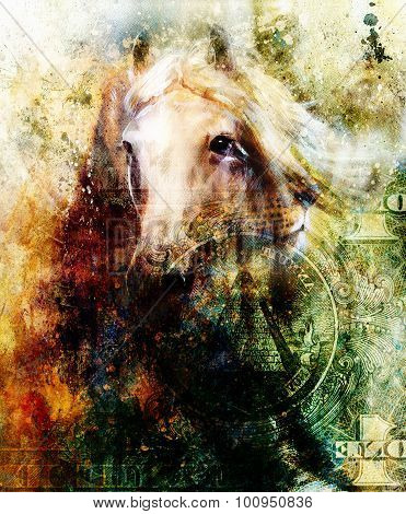 Horse and lion heads, abstract ocre background, with one dollar collage. texture background