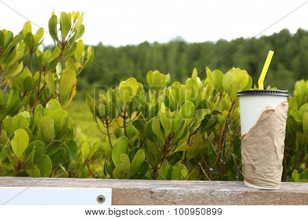 Paper cup and mangrove golden