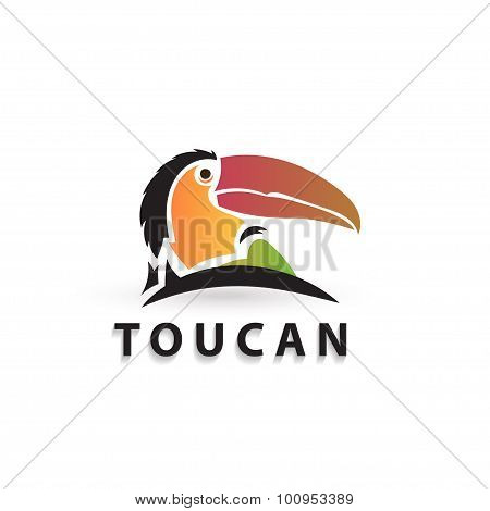 Vector Colorful Stylized Silhouette Toucan. Artistic Creative Design. Elegant Bird Logo Icon.