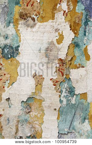 Cracked Plaster - Grunge Background