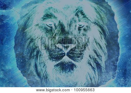 beautiful  painting of a lion head with a majesticaly peaceful expression.