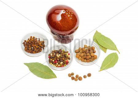 Dried Bay Leaf, Clove, Pepper And Pepper Shaker