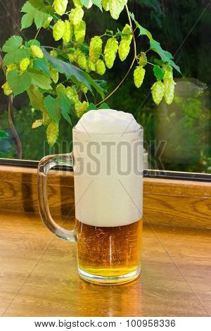 Glass Of Beer On The Background Branches With Hops