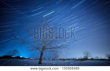 Startrails in the HIght Sky