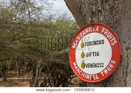 Sign For Poisonous Manchineel Trees