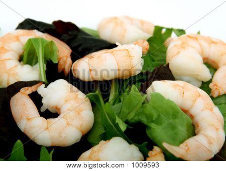 Gesunde Ernährung, Garnelen und Lachs Salat Sandwich auf Schwarzbrot