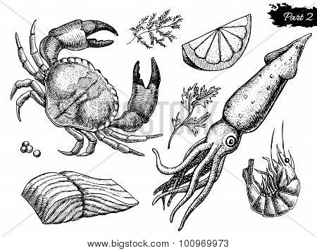 Vector Hand Drawn Seafood Set. Vintage Illustration