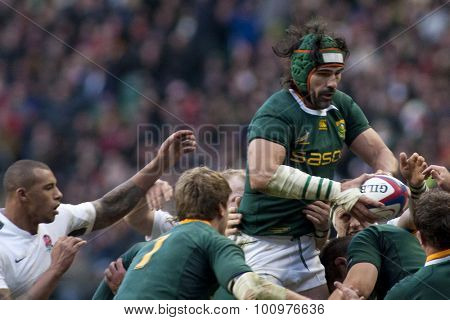 TWICKENHAM LONDON, 27 NOVEMBER 2010. South Africa's Victor Matfield (capt),   during the Investec International match between England and South Africa at Twickenham Stadium Middlesex England.