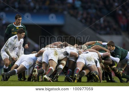 TWICKENHAM LONDON, 27 NOVEMBER 2010.  England's Ben Youngs, puts the ball into the scrum during the International match between England and South Africa at Twickenham Stadium Middlesex England