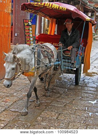 man is driving horse-drawn vehicle  in Lijiang, China