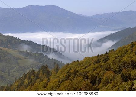 Autumn Landscape With Fog