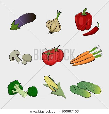 Drawing isolated vegetables.