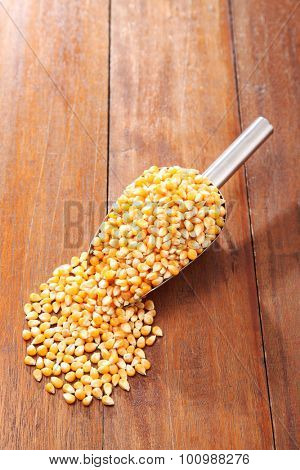 scoop of the maize corn on the wooden background