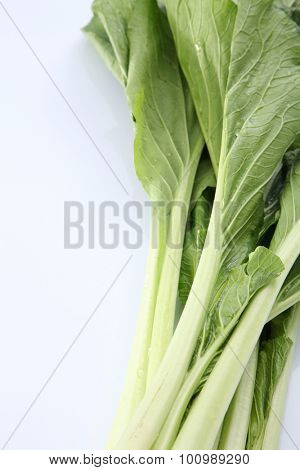 choy sum vegetable on the white background