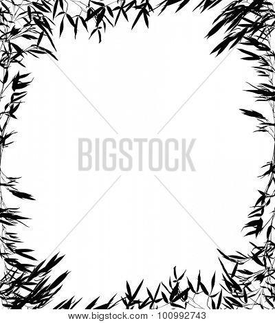 illustration with bamboo frame isolated on white background