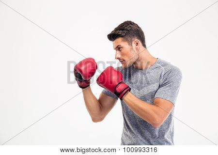 Portrait of a young male boxer isolated on a white background