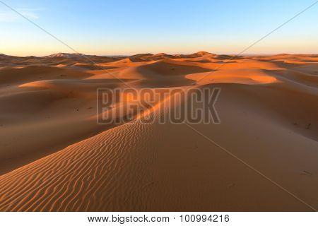 Africa, Morocco - view of Erg Chebbi Dunes -  Sahara Desert