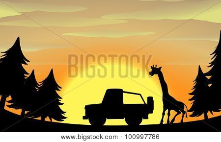 Silhouette nature scene with giraffe and jeep illustration